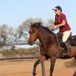 Debbie Dowden_1_horses March 30 2013