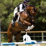 part bred Jumping_WA_May be too small_Sharon Addison_12_RBK Remember Me