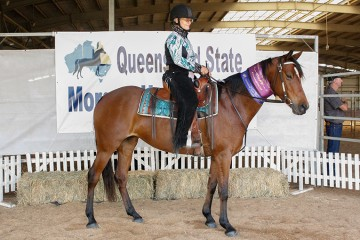 Boulevard Gabrielle and Linda Shore Champion Ridden Part Morgan Mare and Reserve Champion Part Morgan and Hi-Point Ridden