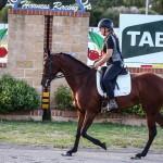 Boulevard Gabrielle and Linda Shore - Trotting Race