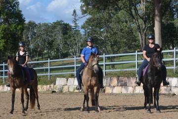 Eatons-Hill-ridden-mares-website