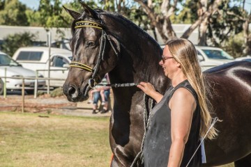 Fernleigh Creek Terresse and Sarah Paine in hand class