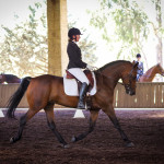 Helena Shanal on Tandarra Millennium in the dressage