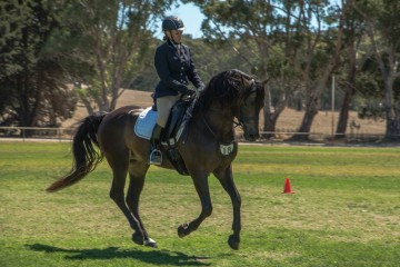 Leambro Somelikeithot and Wendy Brown Ridden class