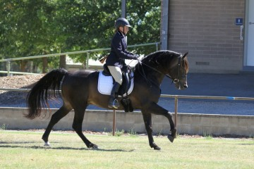 Leambro Somelikeithot and Wendy Brown ridden classes