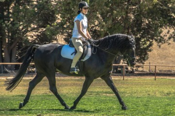 Monica Irizarry on Fernleigh Creek Grandien