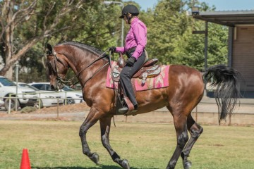 Mt Tawonga Campbell and Kerry Hill Reining class