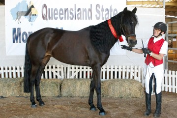 Shibui Cilla Black and Rhonda Menzies-Moreland 2nd Best Presented