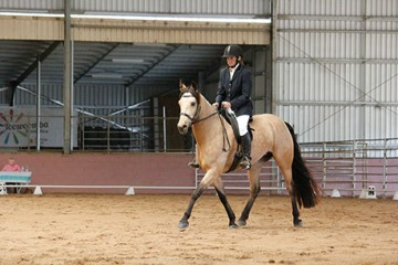 Wilga Park Boquila and Liz Baynham 1st Debut Rider