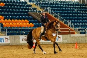 Wilga-Park-Lisianthus-with-Madison-Bennett-ridden-mare-class