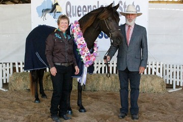 Wilga Park Sassafras Supreme Champion Pure Morgan with Kathy and Greg Lyons