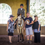 Wilga Park Tibouchina Grand Champion Ridden Morgan