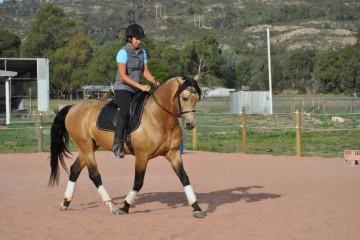 conquistador-june-2015-19-sm
