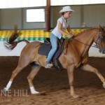 rancher and chelsea stock horse class